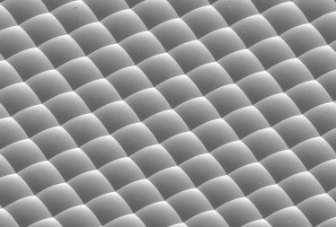 microlens arrays