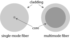 core of single-mode and multimode fiber