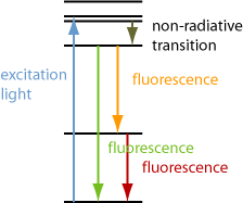 excitation of fluorescence